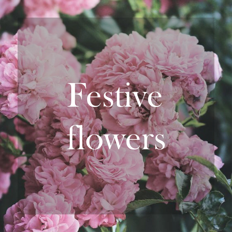 The Best Flowers to decorate your home this Christmas
